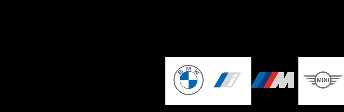 BMW Höglinger Partnerlogo Loch 16